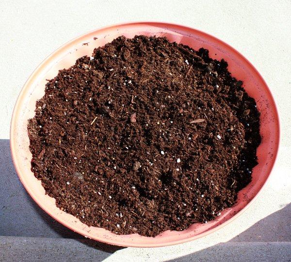 pot-of-soil